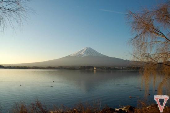 Fuji depuis kawaguchiko